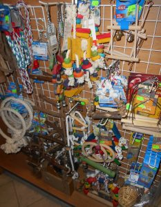 hracky-ptaci-sady